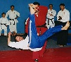 martial arts throw